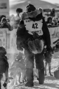 Iditarod_2017