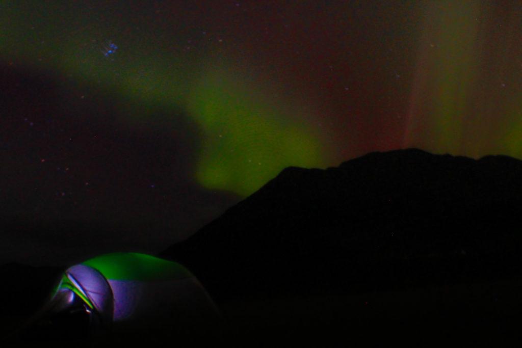 aurora Hope, AK